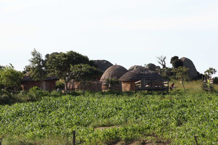 Traditional Swazil Village